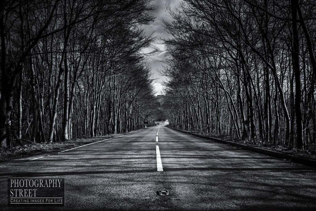 It's a lonely road without friends...